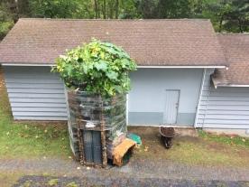 greenpog silo planter