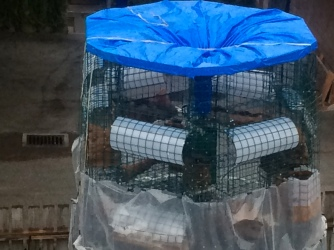 raincatchment funnel view